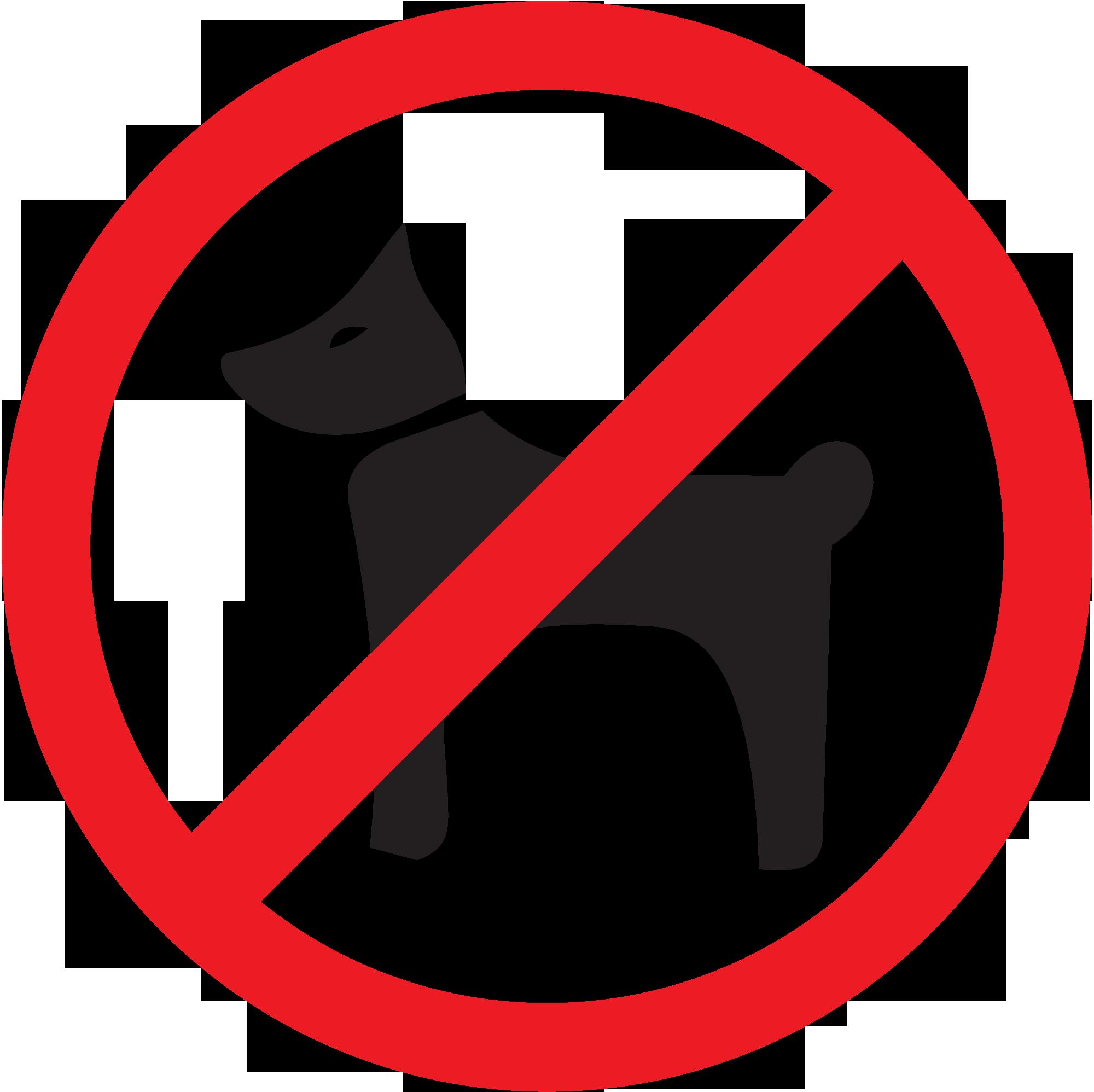 с собаками нельзя