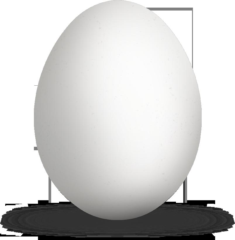 куриное белое яйцо
