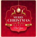 2013 Happy New Year and Merry Christmas