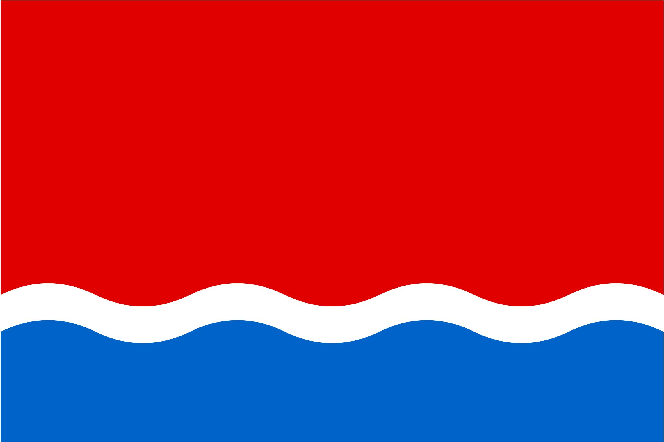 Флаг Амурской области 2008