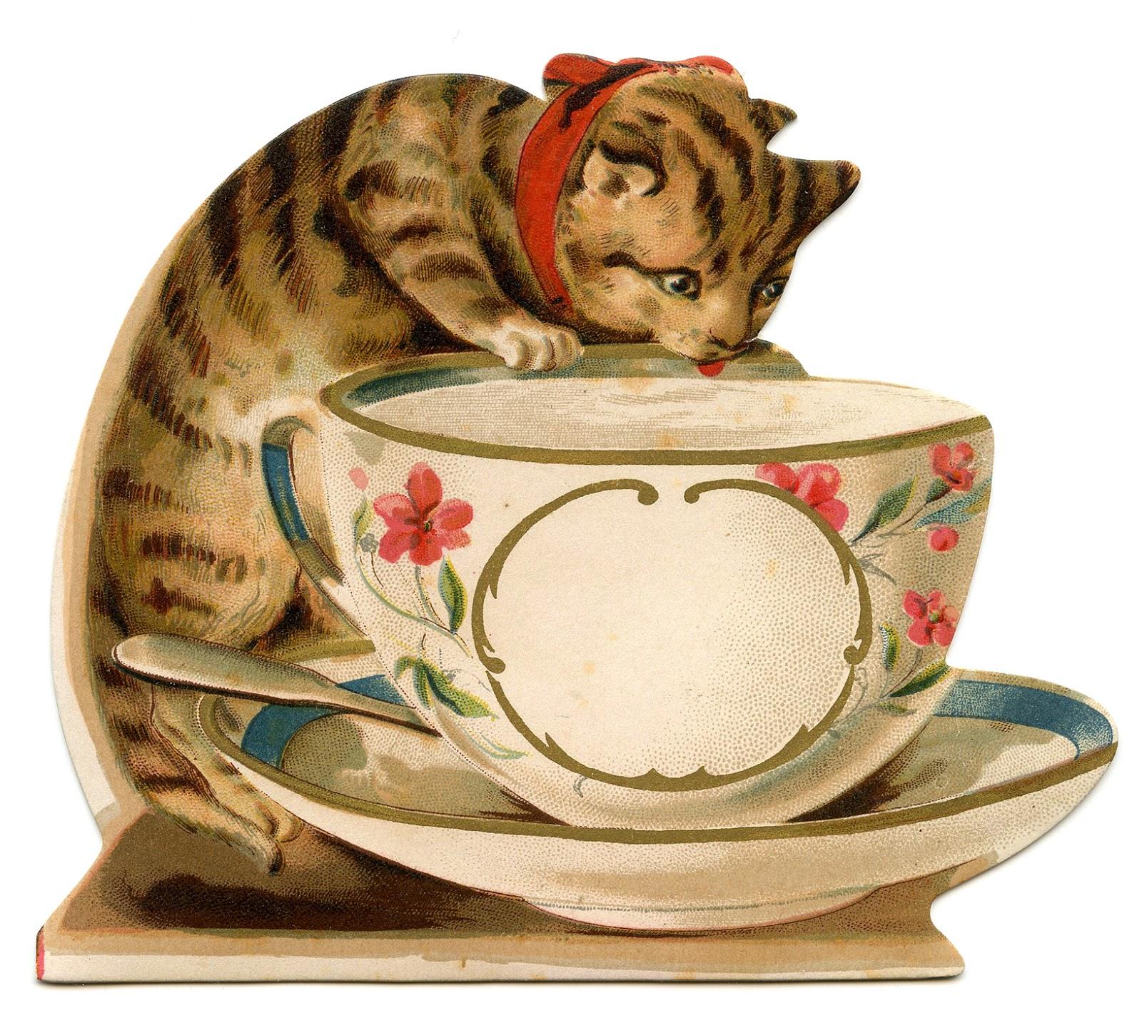 Кошка пьет из чашки