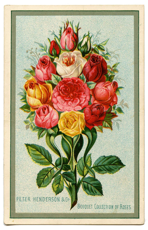 Букет роз - винтажная открытка