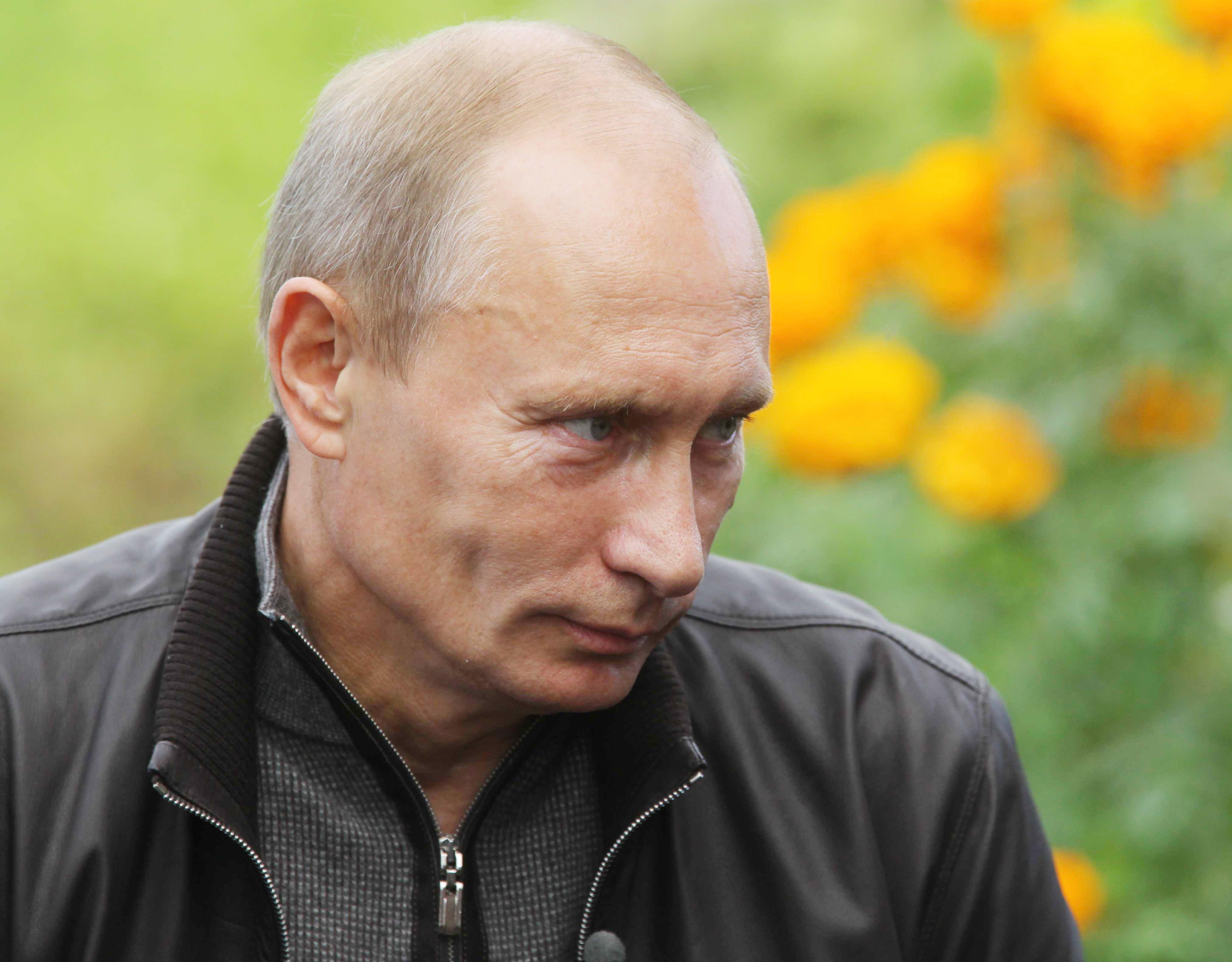 Ироничный Путин - фото с большим разрешением