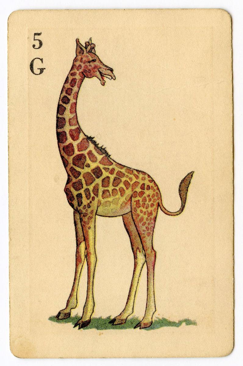 """Винтажная карточка с рисунком """"Смеющийся жираф"""""""