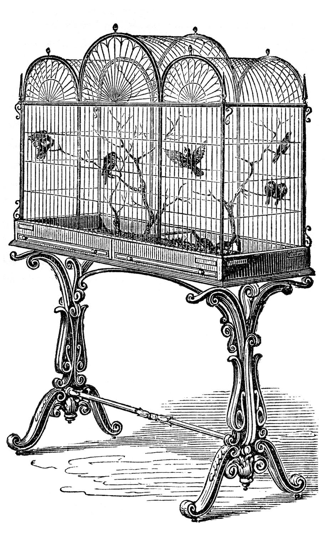 """Черно-белый рисунок """"Клетка с птицами"""""""