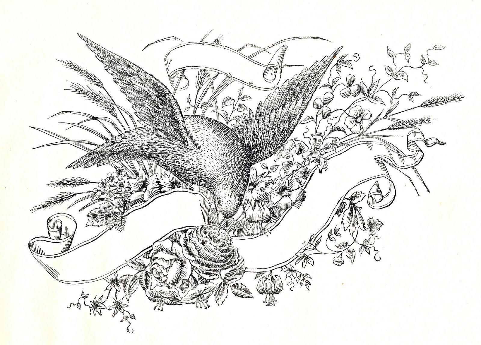 Голубь, цветы и свиток - рисунок для оформления свадебного приглашения