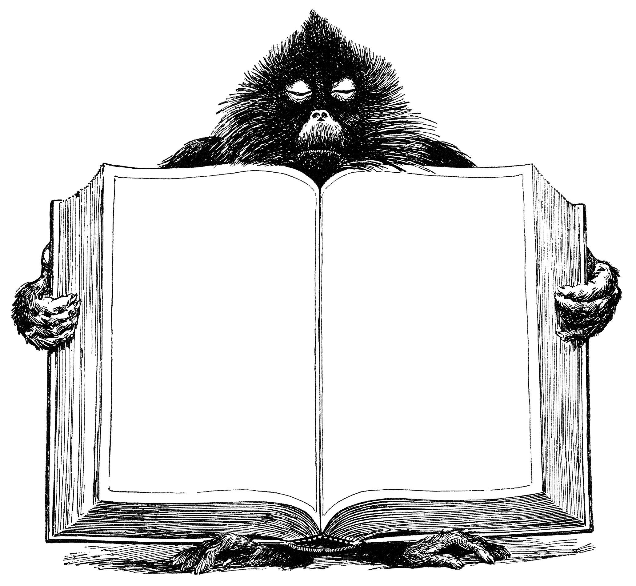 Обезьяна держит книгу