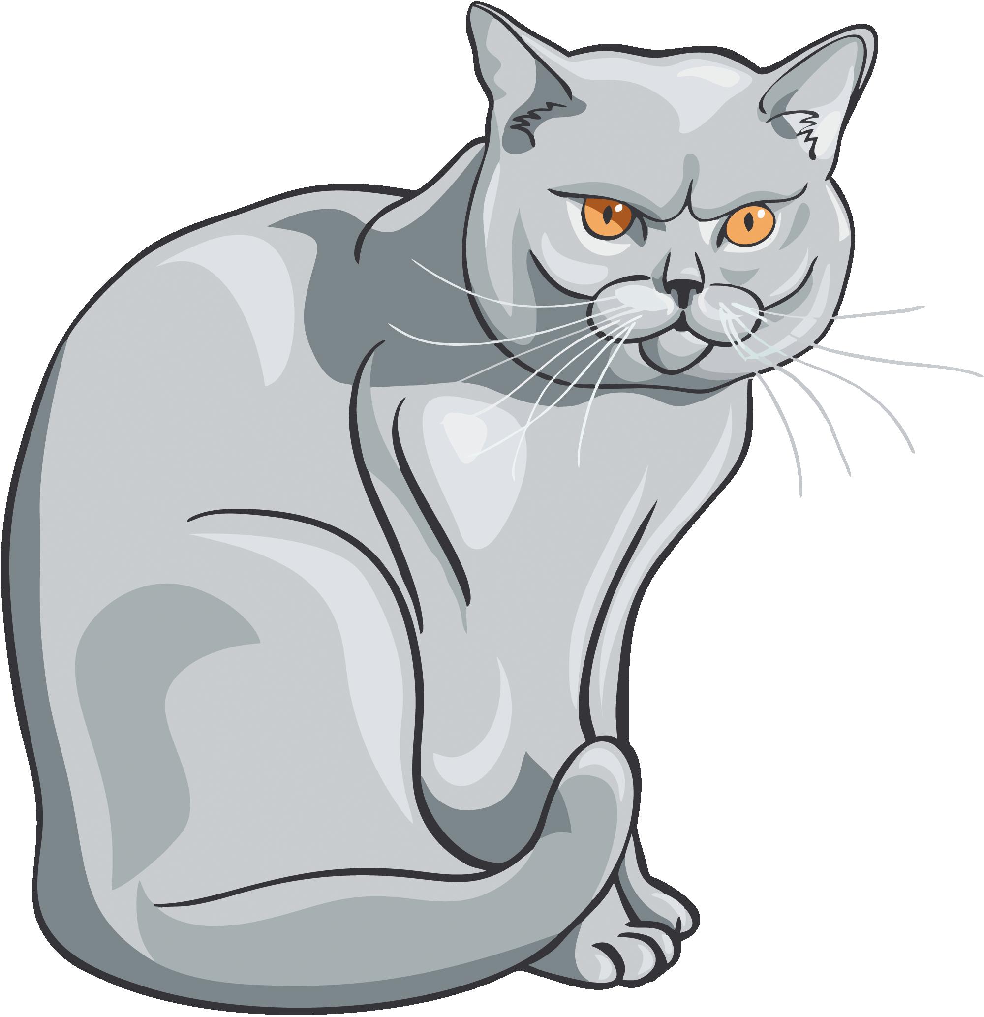 Кот - векторное изображение